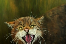 114-Jean-Walker--'WILD-CAT-OF-SCOTLAND'