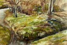 144-Jean-Willmott--'WALSALL-ARBORETUM-STREAM'