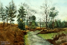 56-Hazel-Jones--'CANNOCK-CHASE'---Watercolour