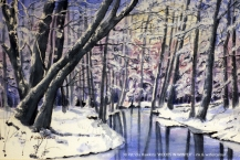 38-Patricia-Hawkins-WOODS-IN-WINTER